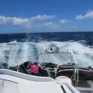 04/01/2013 - A bord