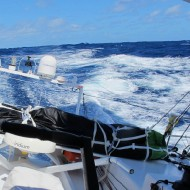 01/12/2012 - A bord